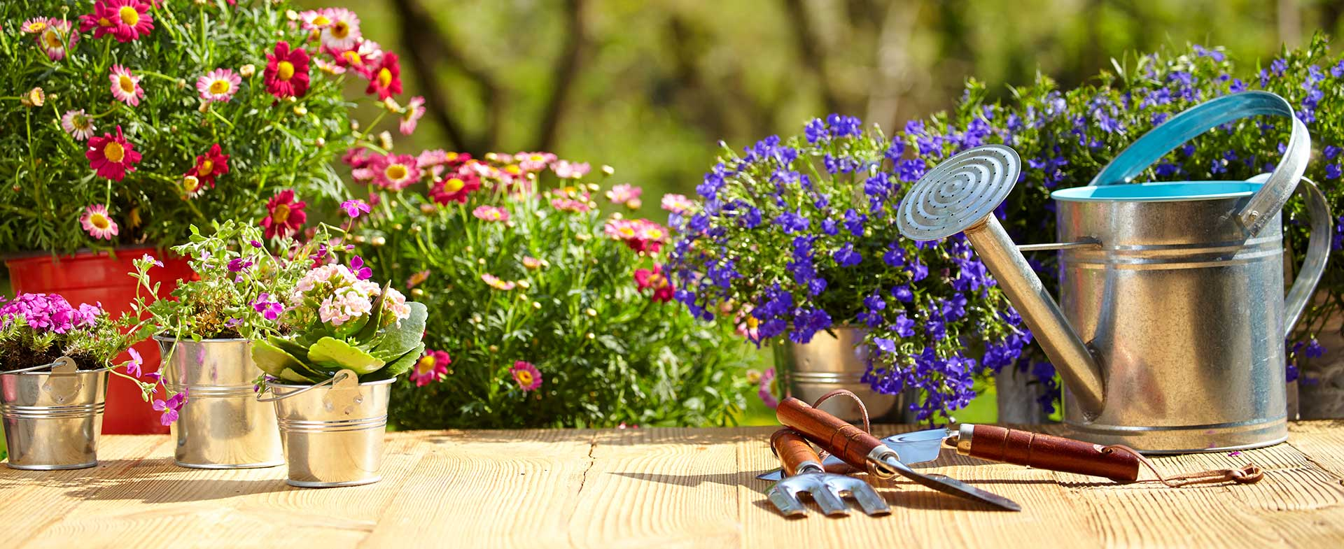 Gardeners Barnes Cray